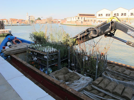 Honey Garden plants - unloading barge